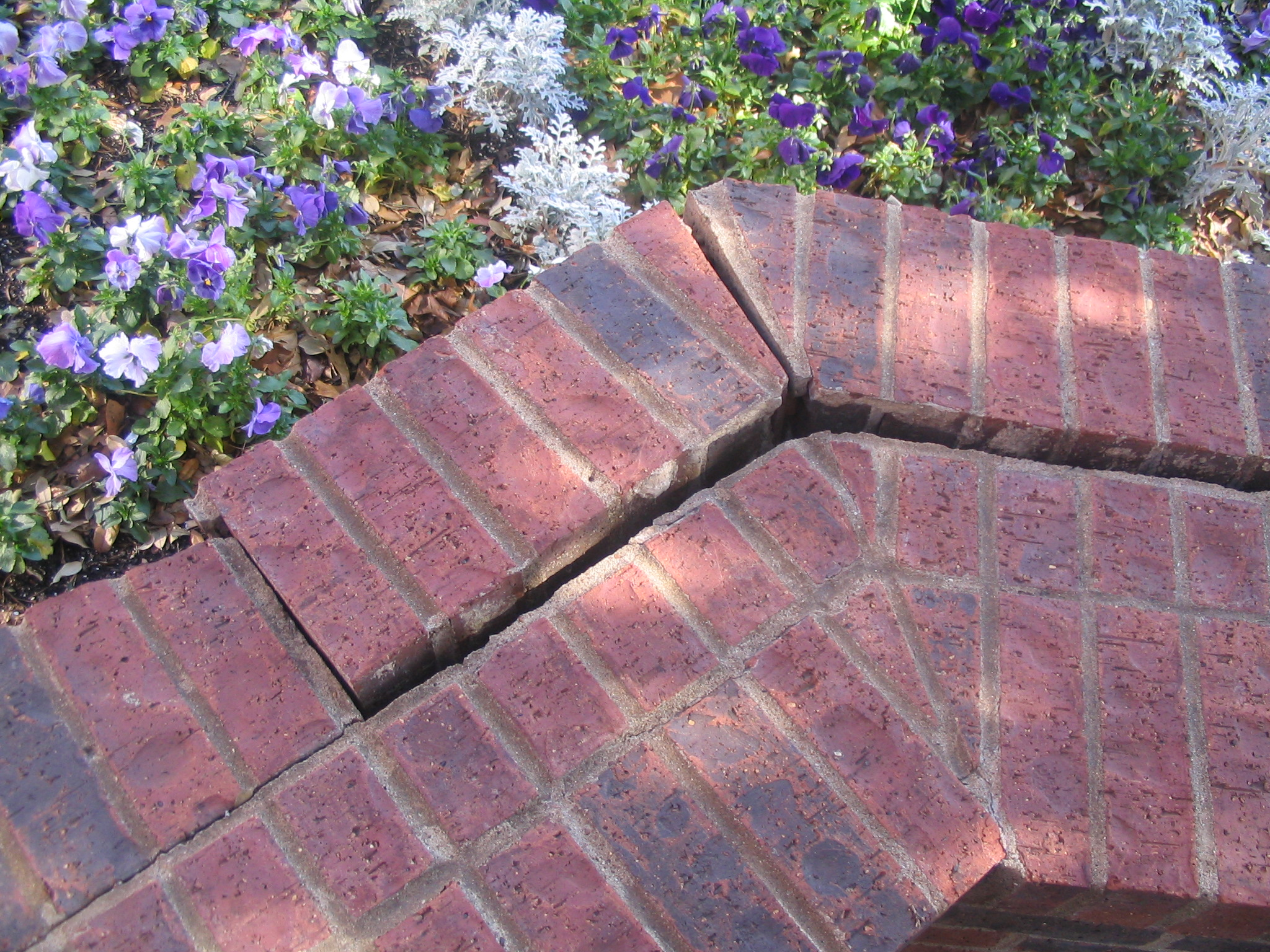 C Amp D Masonry Contractor And Brick Repair Services